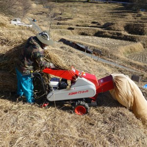 草切り作業
